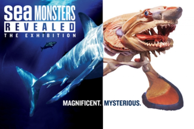 Sea Monsters image
